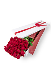 24 Long Stem Roses Presentation Box